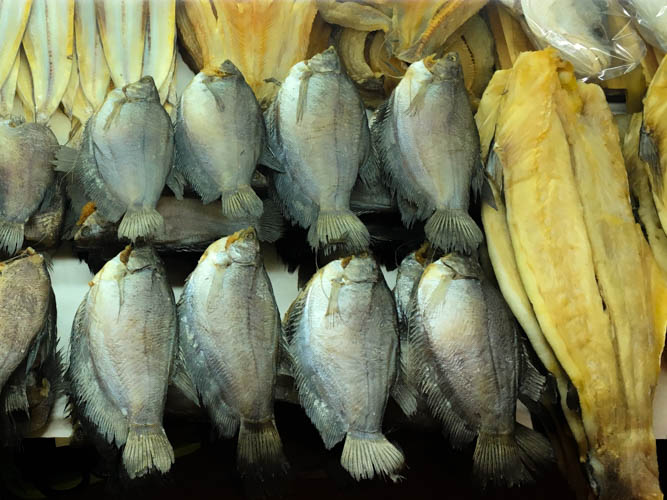 Different types of dried fish